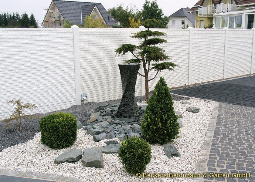 stein01